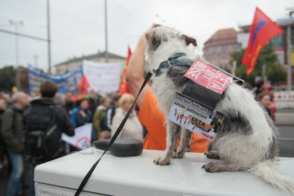 Es gab auch 4 beinigen Protest in Leipzig