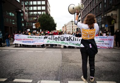 Die Friday for Future Demonstration in Hamburg
