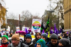 AFD Parteitag Hannover (53 von 70)
