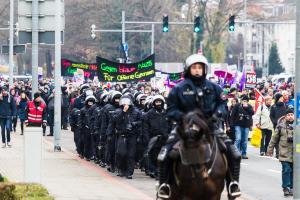AFD Parteitag Hannover (60 von 70)