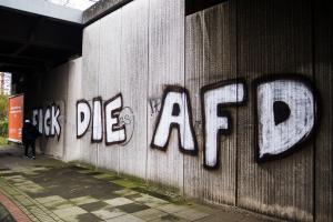 AFD Parteitag Hannover (6 von 70)