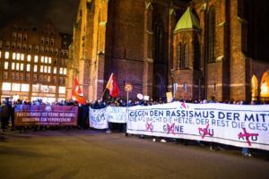 Hamburg FDP Demo (11 von 47)