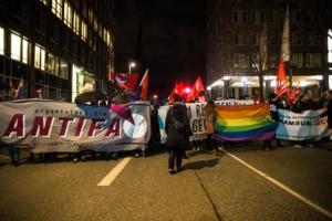 Hamburg FDP Demo (32 von 47)
