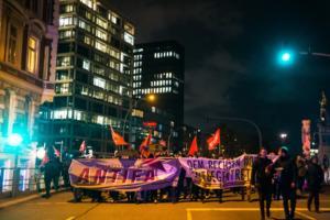 Hamburg FDP Demo (34 von 47)