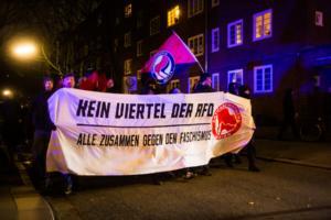 AFD Parteitag Hamburg (3 von 16)