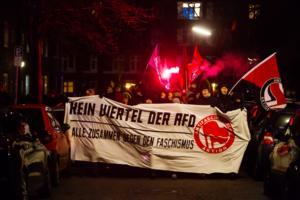 AFD Parteitag Hamburg (5 von 16)