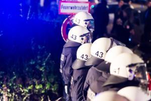 AFD Parteitag Hamburg (12 von 16)