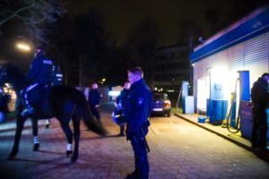 AFD Parteitag Hamburg (14 von 16)