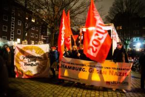 AFD Parteitag Hamburg (7 von 16)