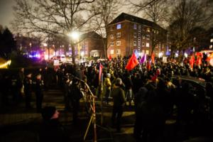 AFD Parteitag Hamburg (9 von 16)
