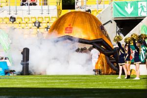 10. Juni 2017 Dresden Monarchs gegen Kiel Baltic Hurricanes-24