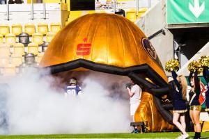 10. Juni 2017 Dresden Monarchs gegen Kiel Baltic Hurricanes-26