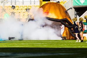 10. Juni 2017 Dresden Monarchs gegen Kiel Baltic Hurricanes-27