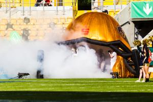 10. Juni 2017 Dresden Monarchs gegen Kiel Baltic Hurricanes-28