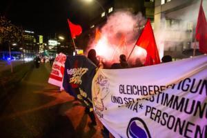18-11-2020 Hamburg Demo gegen AFD (30 von 33)