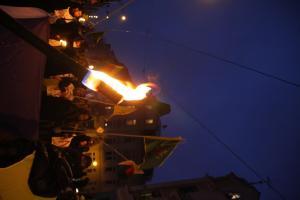 Afrin Demo in Dresden 9