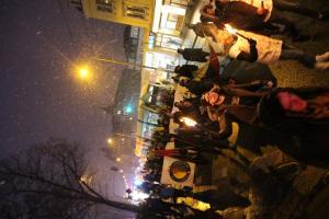 Afrin Demo in Dresden 16