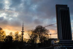 26. März Hamburg  MMW Demo (35 von 41)