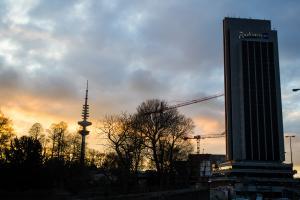 26. März Hamburg  MMW Demo (36 von 41)
